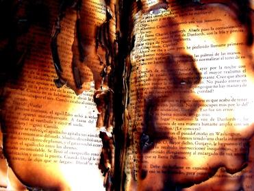 book-fire